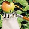 Всё для посадки плодовых