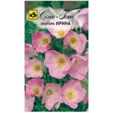 Цветы Энотера Ирина