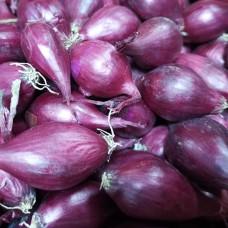 Лук-севок Кармен (0,5 кг)