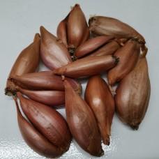 Лук-севок Шалот банановый деликатес (0.5 кг)